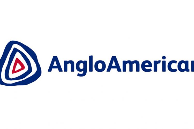 Anglo American suspends key iron ore operation for pipeline checks