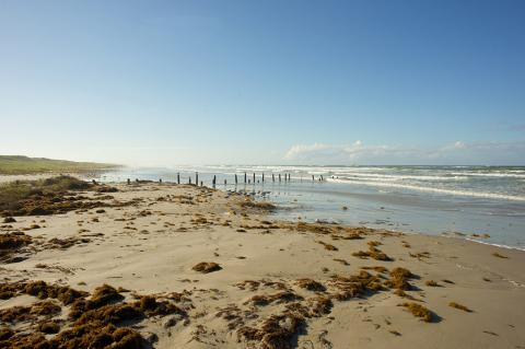 The Gulf Coast of Texas where the EPIC pipeline leads to (Sherry Yates Young / Shutterstock).