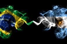 Brazilian and argentine flag plumes (copyright by Shutterstock/vladm)